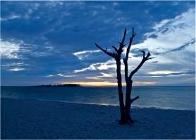 Assateague Island State Park   Maryland