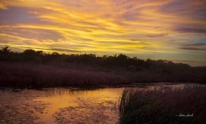 wp_full_Cape_may_sunset