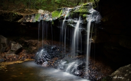 Ricketts Glen State Park   Benton, PA