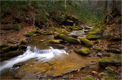 Creek at Glen Onoko   Pennsylvania